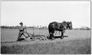 blog - old-plow