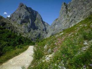 blog - path