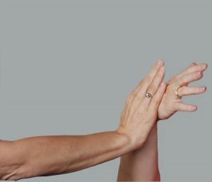 blog - forces - push hands
