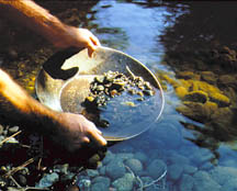 blog - metals - gold panning