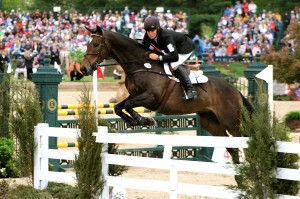 blog - height - over - horse jump