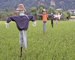 A set of scarecrows in a field in Japan