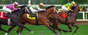 blog - horse - Racing_at_Arlington_Park