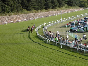blog - horse - inside track