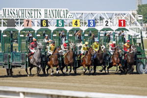 blog - horse - out of the gate