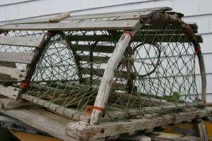 blog - immigration - Lobster_trap