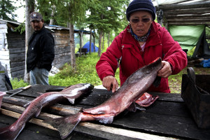blog - animals - gutting Cleaning_Fish
