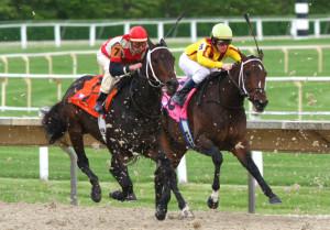 blog - candidates - jockey