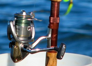 blog - fishing - Fishing_reel