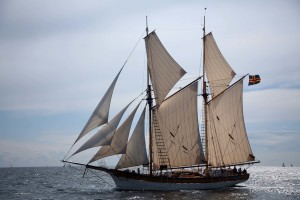 blog - rand paul - schooner