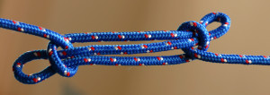blog - phys forces - Sheepshank_knot