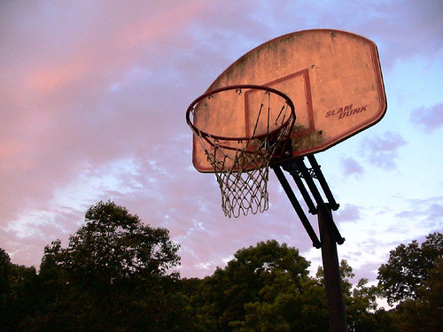blog - trump - bball hoop outdoors