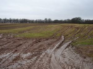 blog - nature - mud 2