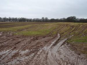 blog - nature - mud 2