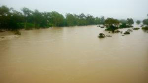 blog-trump-flood