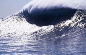 blog-trump-tsunami-wave
