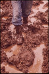 blog-nature-mud-and-boots